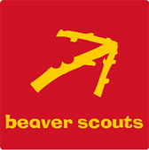 Scouts – Beavers Go Lifesaving